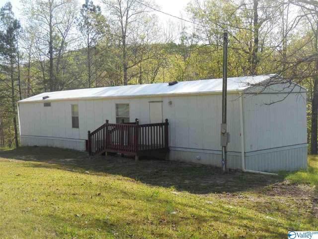 1052 County Road 3782, Arley, AL 35541 (MLS #1778762) :: Southern Shade Realty