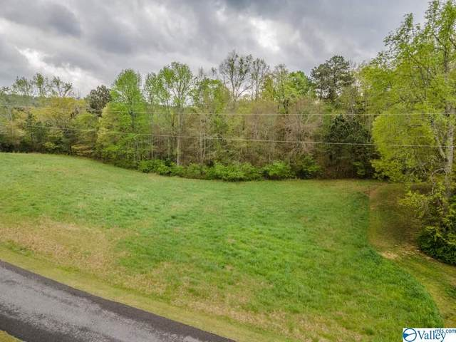 LOT 8 Allison Drive, Oneonta, AL 35121 (MLS #1778773) :: RE/MAX Distinctive | Lowrey Team