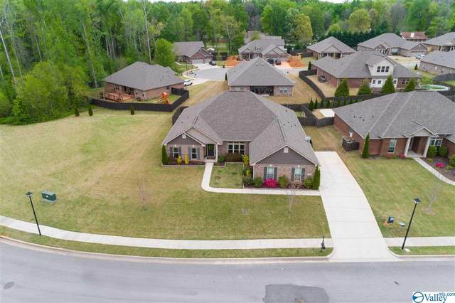 101 Havenbrook Drive, Madison, AL 35756 (MLS #1778826) :: Southern Shade Realty