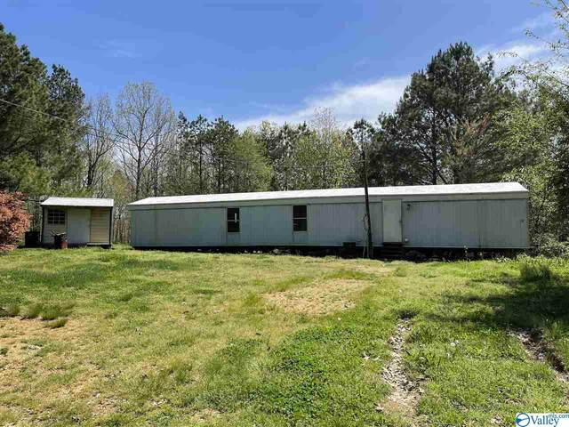 67 Road 9099, Valley Head, AL 35989 (MLS #1778842) :: The Pugh Group RE/MAX Alliance