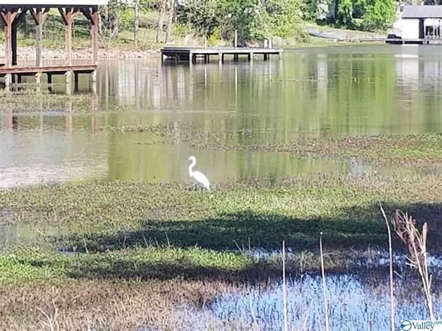 0 Camden Cove Point, Gadsden, AL 35903 (MLS #1778910) :: Southern Shade Realty