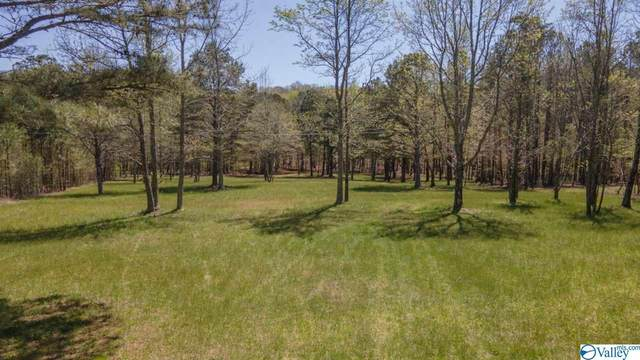 3970 County Road 166, Fort Payne, AL 35967 (MLS #1778963) :: The Pugh Group RE/MAX Alliance