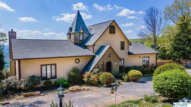 560 County Road 848, Mentone, AL 35984 (MLS #1779265) :: MarMac Real Estate