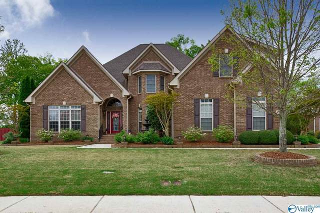 133 Misty River Lane, Huntsville, AL 35824 (MLS #1779287) :: Legend Realty