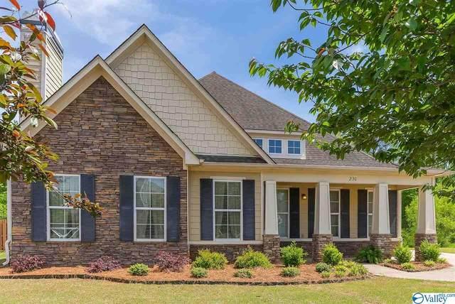 230 Wolf Creek Trail, Huntsville, AL 35824 (MLS #1779326) :: MarMac Real Estate
