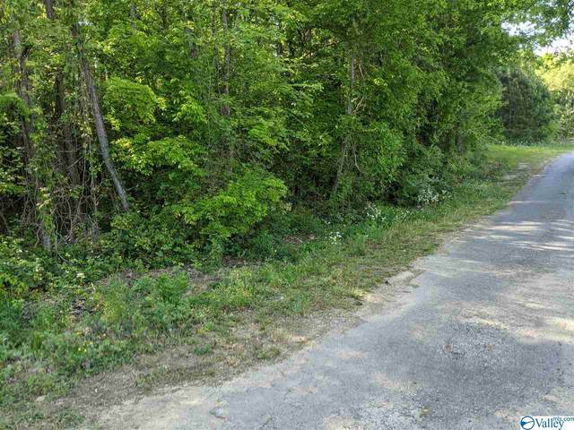 Sims Street, Hokes Bluff, AL 35903 (MLS #1779493) :: RE/MAX Distinctive | Lowrey Team