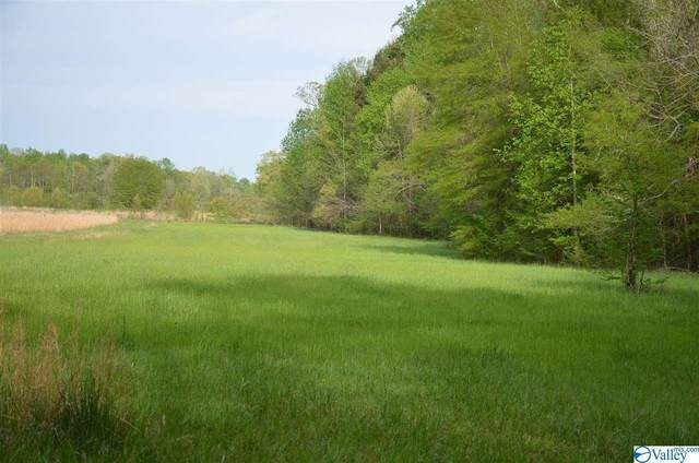 County Road 90, Moulton, AL 35650 (MLS #1779529) :: MarMac Real Estate