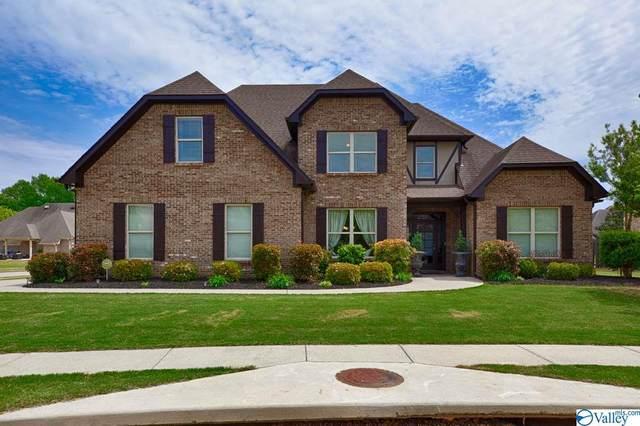 115 Misty River Lane, Huntsville, AL 35824 (MLS #1779601) :: MarMac Real Estate