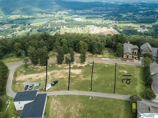 96 Ledge View Drive, Huntsville, AL 35802 (MLS #1779650) :: MarMac Real Estate
