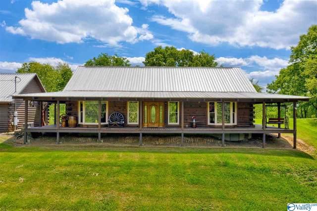 485 Mohawk Cliff Road, Ohatchee, AL 36271 (MLS #1779784) :: MarMac Real Estate