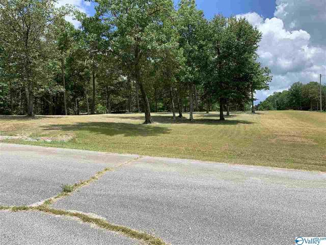 159 SE Ridgecreek Drive, Gurley, AL 35748 (MLS #1779804) :: MarMac Real Estate