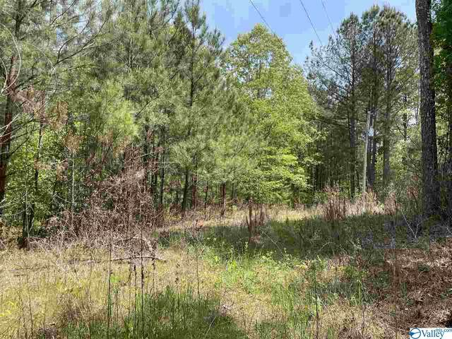 0 Alabama Highway 91, Bremen, AL 35033 (MLS #1779831) :: Legend Realty