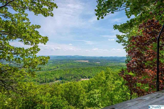 480 County Road 859, Mentone, AL 35984 (MLS #1780031) :: Green Real Estate