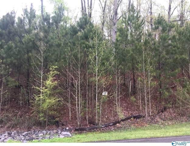 Lookout Mountain Drive, Scottsboro, AL 35769 (MLS #1780232) :: Green Real Estate