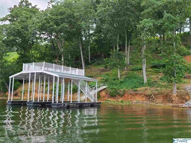 929 Monte Sano Drive, Scottsboro, AL 35769 (MLS #1780234) :: Green Real Estate