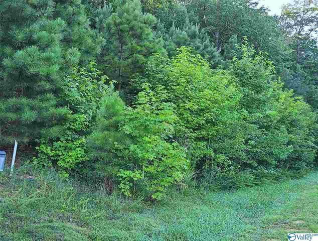 1395 Lookout Mountain Drive, Scottsboro, AL 35769 (MLS #1780235) :: Green Real Estate