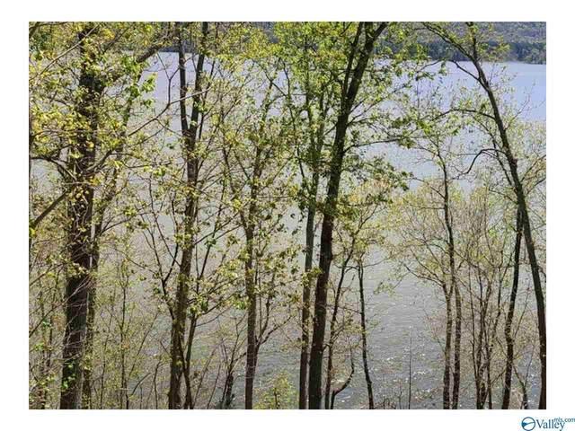 745 Monte Sano Drive, Scottsboro, AL 35769 (MLS #1780239) :: Green Real Estate