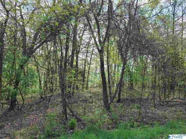 810 Monte Sano Drive, Scottsboro, AL 35769 (MLS #1780240) :: Green Real Estate