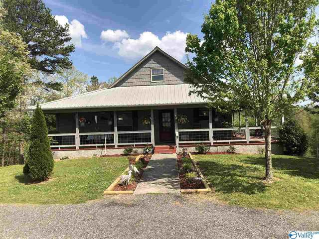 1551 Pine Grove Road, Collinsville, AL 35961 (MLS #1780258) :: The Pugh Group RE/MAX Alliance