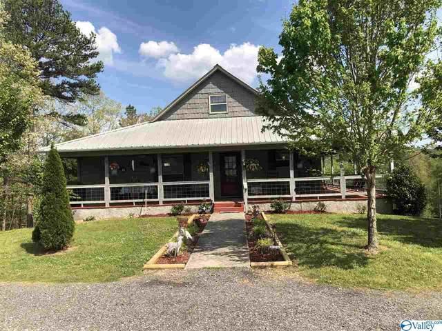 1551 Pine Grove Road, Collinsville, AL 35961 (MLS #1780258) :: The Pugh Group RE/MAX Alliance