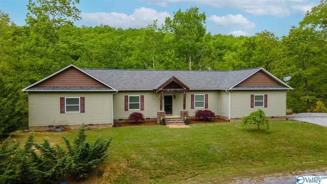 265 County Road 859, Mentone, AL 35989 (MLS #1780264) :: RE/MAX Distinctive | Lowrey Team