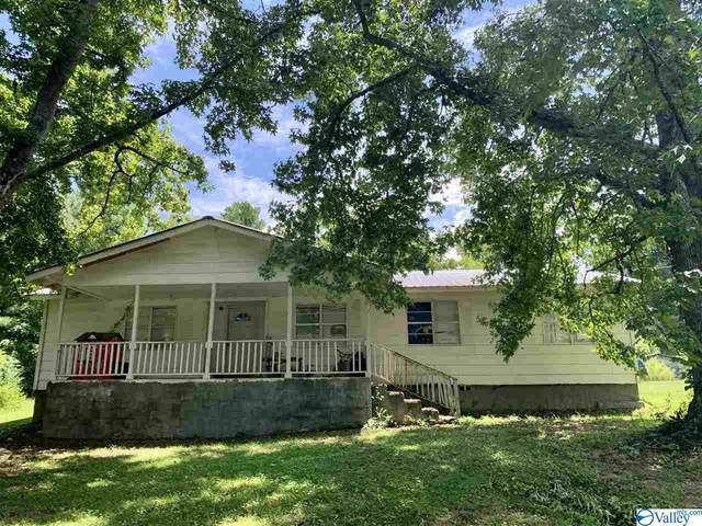 144 Thomas Road, Altoona, AL 35952 (MLS #1780488) :: MarMac Real Estate