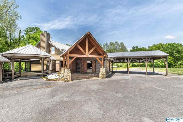 569 Swan Creek Road, Guntersville, AL 35976 (MLS #1780584) :: Dream Big Home Team | Keller Williams