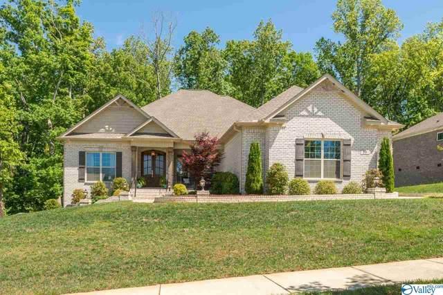 10 Natures Loop Road, Huntsville, AL 35803 (MLS #1780605) :: Green Real Estate