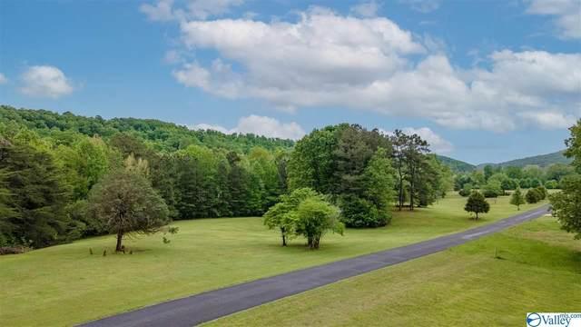 4.3 County Road 622, Valley Head, AL 35989 (MLS #1780725) :: RE/MAX Distinctive | Lowrey Team