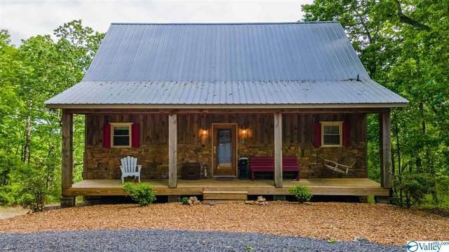 235 County Road 844, Mentone, AL 35984 (MLS #1780743) :: RE/MAX Distinctive | Lowrey Team