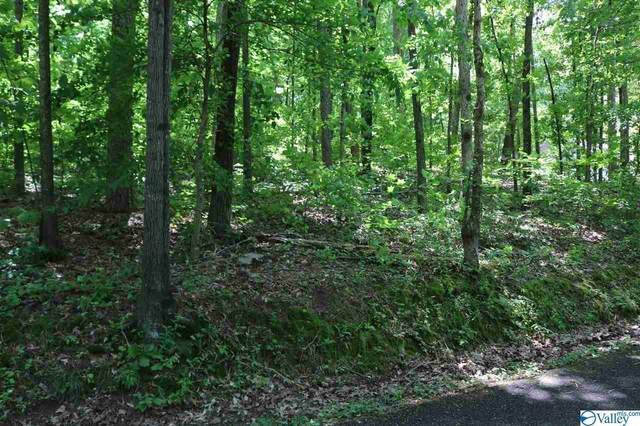 00 Lindsey Lane, Guntersville, AL 35976 (MLS #1780978) :: Green Real Estate