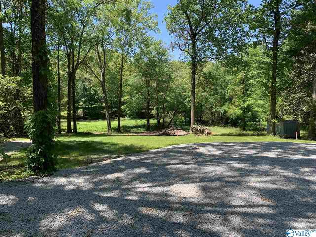 0 River Drive, Hollywood, AL 35752 (MLS #1781220) :: The Pugh Group RE/MAX Alliance