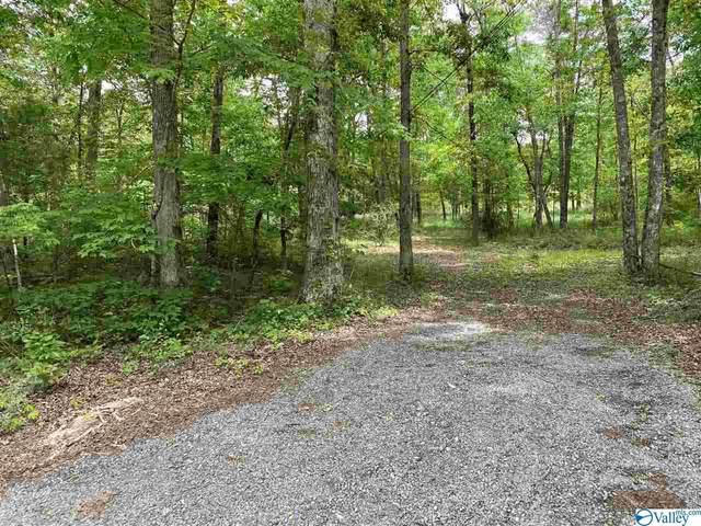 Bear Creek Road, Fort Payne, AL 35967 (MLS #1781404) :: RE/MAX Unlimited