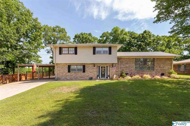 503 Delmar Drive, Glencoe, AL 35905 (MLS #1781508) :: Green Real Estate