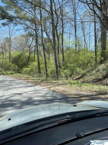 00 Black Road, Blountsville, AL 35031 (MLS #1781578) :: Green Real Estate
