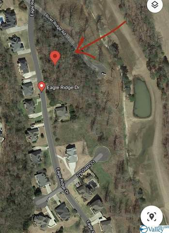 0 Lt33 Eagle Ridge, Guntersville, AL 35976 (MLS #1781603) :: The Pugh Group RE/MAX Alliance