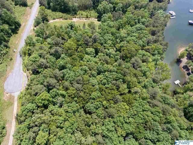 LoT 115 County Road 182, Crane Hill, AL 35053 (MLS #1781616) :: RE/MAX Unlimited
