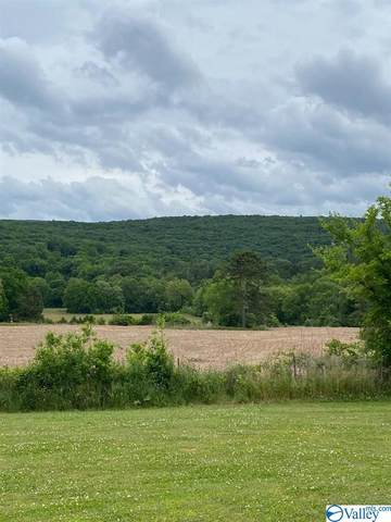 2177 County Lake Road, Gurley, AL 35748 (MLS #1781631) :: Amanda Howard Sotheby's International Realty