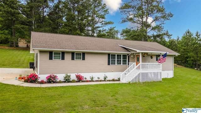 3210 Grand Avenue, Fort Payne, AL 35967 (MLS #1781675) :: Green Real Estate