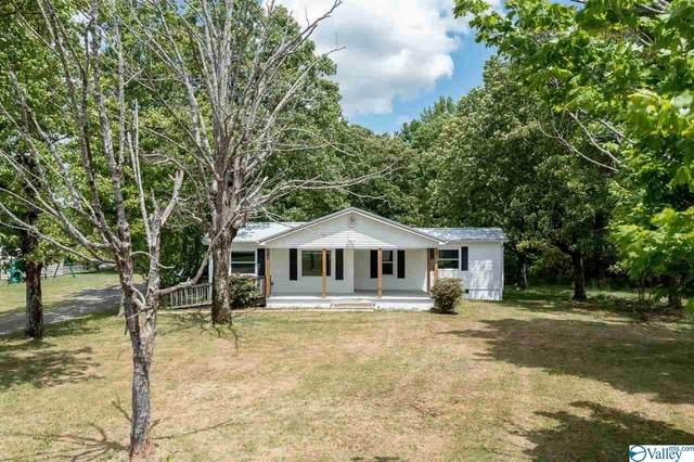 102 County Road 804, Flat Rock, AL 35966 (MLS #1781695) :: Amanda Howard Sotheby's International Realty