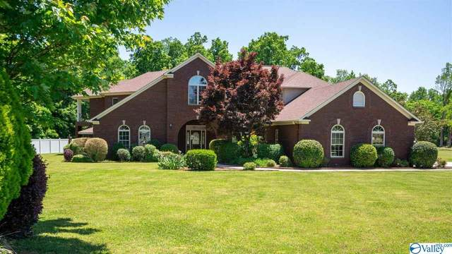 25904 Pepper Road, Athens, AL 35613 (MLS #1781705) :: Southern Shade Realty