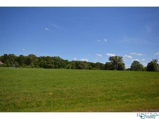 0 County Road 1539, Cullman, AL 35055 (MLS #1781707) :: MarMac Real Estate