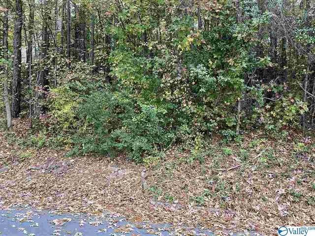 Lot 30 and 31 Hualapai Lane, Guntersville, AL 35976 (MLS #1781962) :: Green Real Estate