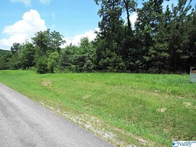 209 Stoney Point Road, Double Springs, AL 35553 (MLS #1782006) :: RE/MAX Unlimited