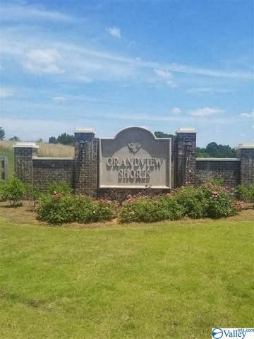 Lot 52 Grandview Drive, Crane Hill, AL 35053 (MLS #1782085) :: Southern Shade Realty