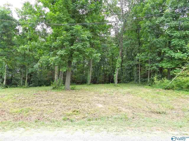 Stoney Mountain Drive, Guntersville, AL 35976 (MLS #1782248) :: Green Real Estate