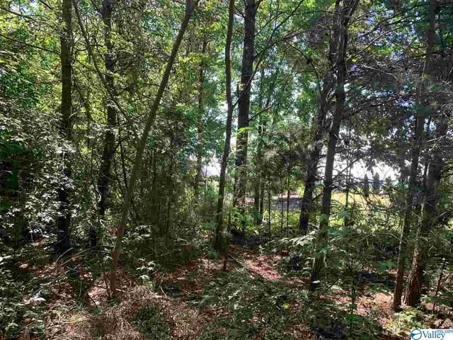 * Panorama Point, Scottsboro, AL 35976 (MLS #1782418) :: LocAL Realty