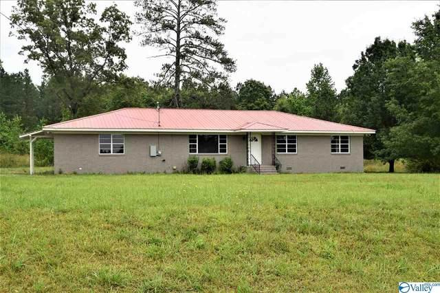 2181 Oak Grove Road, Glencoe, AL 35905 (MLS #1782552) :: MarMac Real Estate