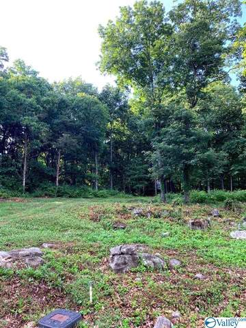 2505 Gaboury Lane, Huntsville, AL 35811 (MLS #1783034) :: Amanda Howard Sotheby's International Realty