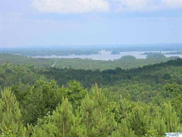 Lot #8 County Road 682, Cedar Bluff, AL 35959 (MLS #1783080) :: Green Real Estate